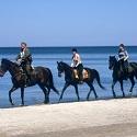 Galopując brzegiem morza – konno po plaży