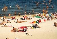 kryncia morska plaża