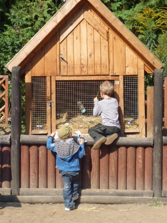 Czas nad morze - Zoo Gdańsk Oliwa