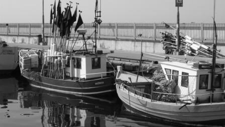 wędkarstwo morskie władysławowo ustka kołbrzeg