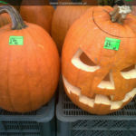 Halloween i Andrzejki nad morzem