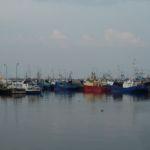 Port Władysławowo-atrakcje:rejsy i świeże ryby