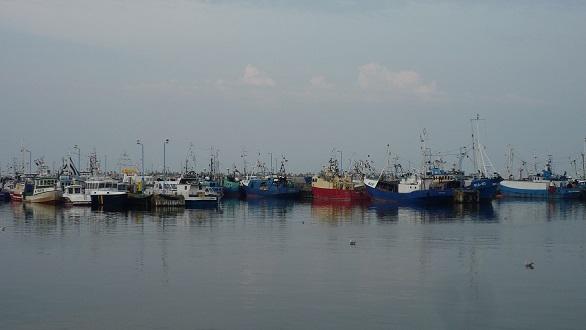 Port Władysławowo atrakcje kutry rejsy