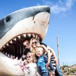 Park Wieloryba Rewal-opinie-atrakcje dla dzieci