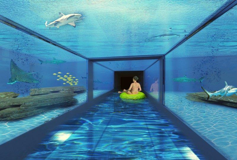 Rekiny i oceanarium w Aquasfera Reda Aquapark