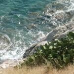 Teneryfa – Wyspy Kanaryjskie – jaka pogoda w listopadzie i grudniu?