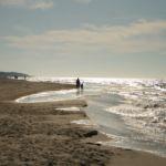 Gdzie najbliżej nad morze z Łodzi – jak dojechać?