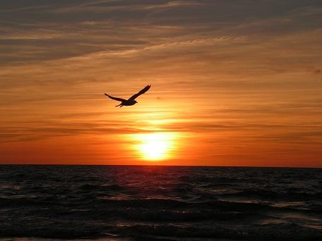 Gdzie spokojne miejsce nad morzem cicho nad Bałtkiem