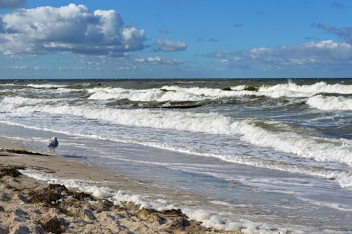 baltic-sea-4851658_960_720