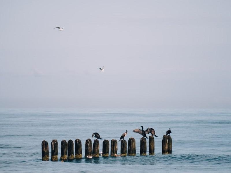 mielno atrakcje co zwiedzić morze